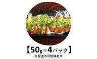 希少!馬レバ刺し 50g×4パック【配送不可:離島】