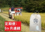 【6ヶ月】 よざえもんの 一等米・あきたこまち5kg(精米)【定期便】秋田県産