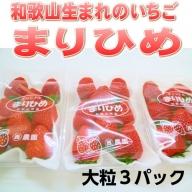 和歌山生まれのイチゴ【まりひめ】大粒3パック
