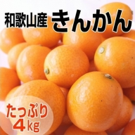 完熟きんかん/金柑 4kg 秀品 Lサイズ以上