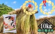 『 新米 特A 一等米 』  秋田の米どころ 仙北市産 あきたこまち 2年産 精米 10kg
