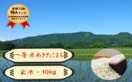 【農家直送】秋田県 仙北市産米 令和2年産 あきたこまち(玄米 10kg)