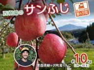[青森県産りんご]青森県鰺ヶ沢町 西樹園のサンふじ約8~10kg(24~36玉)