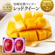 完熟マンゴー『レッドクイーン』2玉×3L (920g以上)