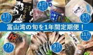 【1年間定期便】富山湾の旬を食す!「氷見ぶり・白えび・ほたるいか・のどぐろ」など19種!(奇数月6回お届け)