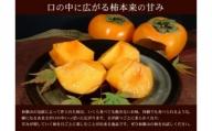 ■和歌山の種なし柿 約7.5kg(秀品:サイズ・品種おまかせ)/紀伊国屋文左衛門本舗