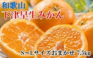 【産直】下津早生みかん7.5kg(S~Lサイズおまかせ)