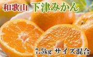 【産直】下津早生みかん7.5kg(サイズ混合)