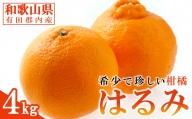 【2021年1月下旬以降出荷】大人気の春柑橘!和歌山県有田郡内産 はるみ 4kg(赤秀/贈答用にも)