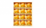 【プレミア和歌山認定】高級『田村みかん』を丸ごと使用!フルーツ丸ごと田村みかんゼリーセット 12個入