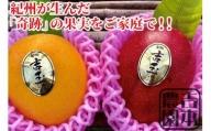 ※受付終了※紀州完熟マンゴー『吉玉』【2玉入り】
