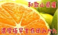 【秋の美味】【農家直送】濃厚極早生有田みかん(ご家庭用) 6.5kg