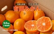 【1月発送】【数量限定】濃厚完熟有田みかん(ご家庭用) たっぷり6.5kg