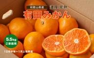 【12月中旬~1月上旬発送】【数量限定】濃厚有田みかん(ご家庭用) たっぷり6.5kg