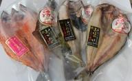 干し魚セット(サクラマス・活〆ホッケ・活〆アオソイ・活〆真カレイ)オホーツク佐呂間産