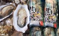 オホーツクサロマ産カキ2年貝殻付き約2.5kg・1年貝むき身200g×2