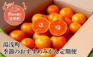 YAS-T01_【定期便 6回】湯浅町季節のおすすめみかん定期便(隔月お届け)