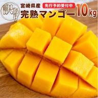<先行予約>[訳アリ]完熟マンゴー《家庭用》10kg※2021年4月~8月の収穫期間内出荷【E76】