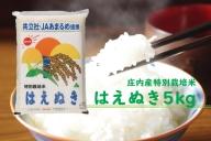 【080-008】庄内町余目産 特別栽培米はえぬき5kg