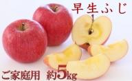 <2020年10月中旬頃よりお届け>北海道壮瞥産りんご 早生ふじ 約5kg(14~18玉)【ご家庭用】