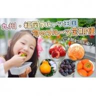 E036.【人気】九州・福岡フルーツ王国.旬のフルーツ定期便Dセット
