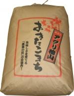アグリ檜山米(あきたこまち)玄米30kg