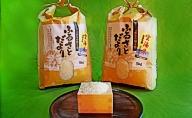 高梁市産の雲海米コシヒカリ 10kg(5kg×2袋)(農家のたべりょうまい)