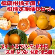 E084.福岡柑橘王国!柑橘定期便Bセット