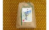 令和二年産守谷産コシヒカリ5kg【白米発送】
