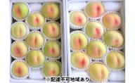 農マル園芸あかいわ農園 赤磐市産 白鳳 約4kg(10~15玉)ご家庭用