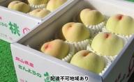 ●先行予約受付●農マル園芸あかいわ農園 赤磐市産 おかやま夢 白桃 約2kg(5~6玉)ご家庭用