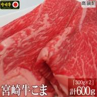 <宮崎牛こま600g(300g×2)>