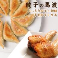 <馬渡のもっちり餃子40個と手羽餃子10本セット>