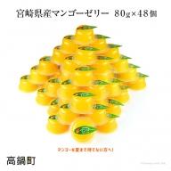 <宮崎県産マンゴーゼリー48個>