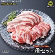 <高鍋町産 佐藤ファームの豚肉 雅セット合計2.1kg>