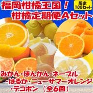 F029.福岡柑橘王国!柑橘定期便Aセット