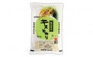 【令和2年産】徳島県阿波市産キヌヒカリ5kg