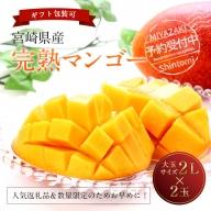 2021年4月中旬から順次出荷<大玉サイズ>宮崎県産 完熟マンゴー 2L×2玉 化粧箱入り【B211】