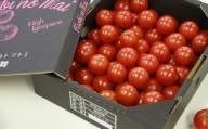 高糖度&高機能性 フルーツトマト1kg A-330