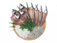 【お歳暮専用】【A-30】浜口海産物店の干物セット(寄附金5,000円コース)