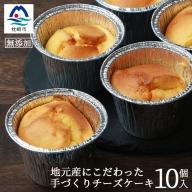 【無添加】厳選素材の手づくりチーズケーキ 10個 【添加物・着色料不使用】