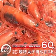 [D024] 【1~4月発送】姫丸の昆布〆特大甘エビ80匹(獲れたて鮮度抜群!まるごと昆布〆!)