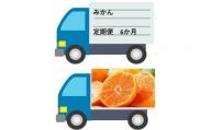 BC020 【佐賀県産】みかん定期便【年6回】