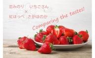 BC019 いちご食べ比べ さがほのか いちごさん 恋みのり 紅ほっぺ