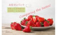 BC018 いちご食べ比べ おまかせ2パック さがほのか いちごさん 恋みのり 紅ほっぺ
