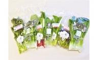 CQ004 オーガニックサラダミニセット【植物性で育てた完全無農薬の葉野菜ブランド有機JAS】「6回定期便」(CQ004)