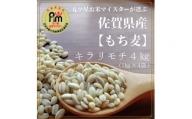 CI063 佐賀県産『もち麦』4kg(1kg×4袋) 【キラリモチ】