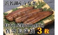 浜名湖産うなぎ特大・長蒲焼パック3枚入り【配送不可:離島】