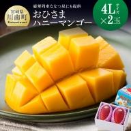 【2021年発送】おひさまハニーマンゴー 4L×2玉