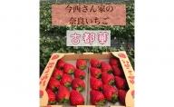 今西さん家の奈良いちご古都華300g×2パック